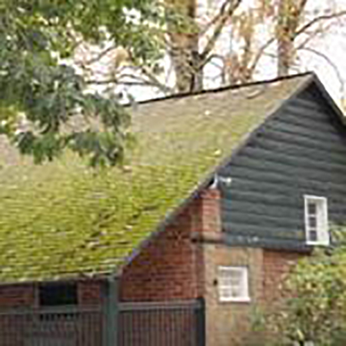 Bachelor Cottage Roof before repairs