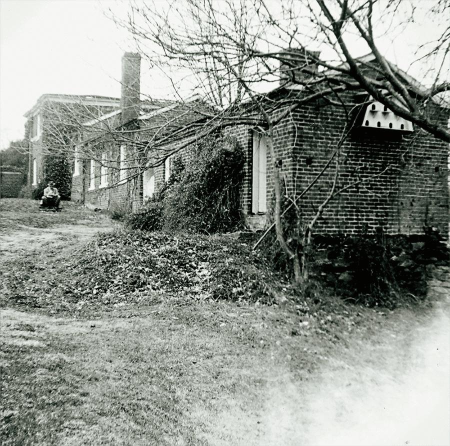 The Garden Dependency, 1951